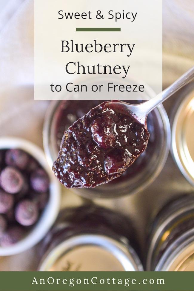 sweet-spicy blueberry chutney on spoon