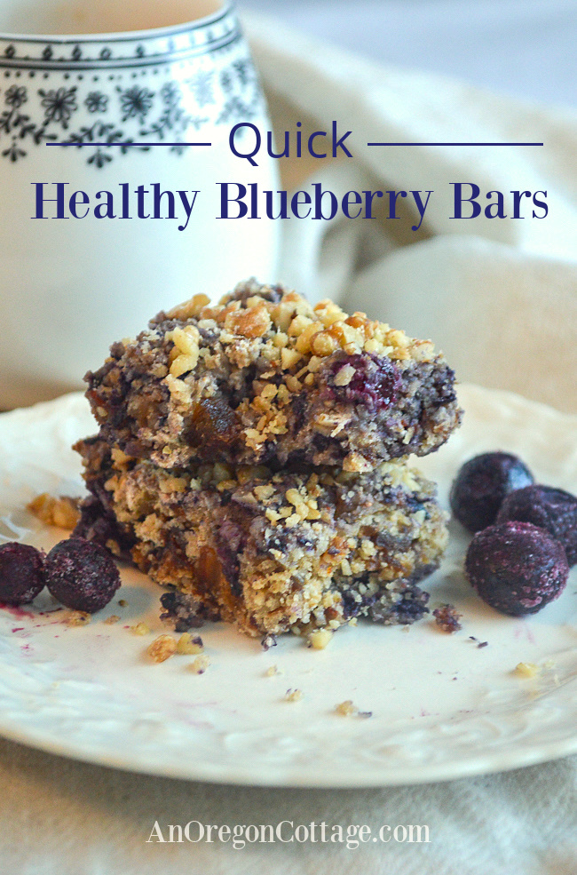 quick healthy blueberry bars on plate