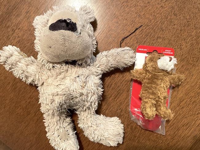tiny bear toy mistake