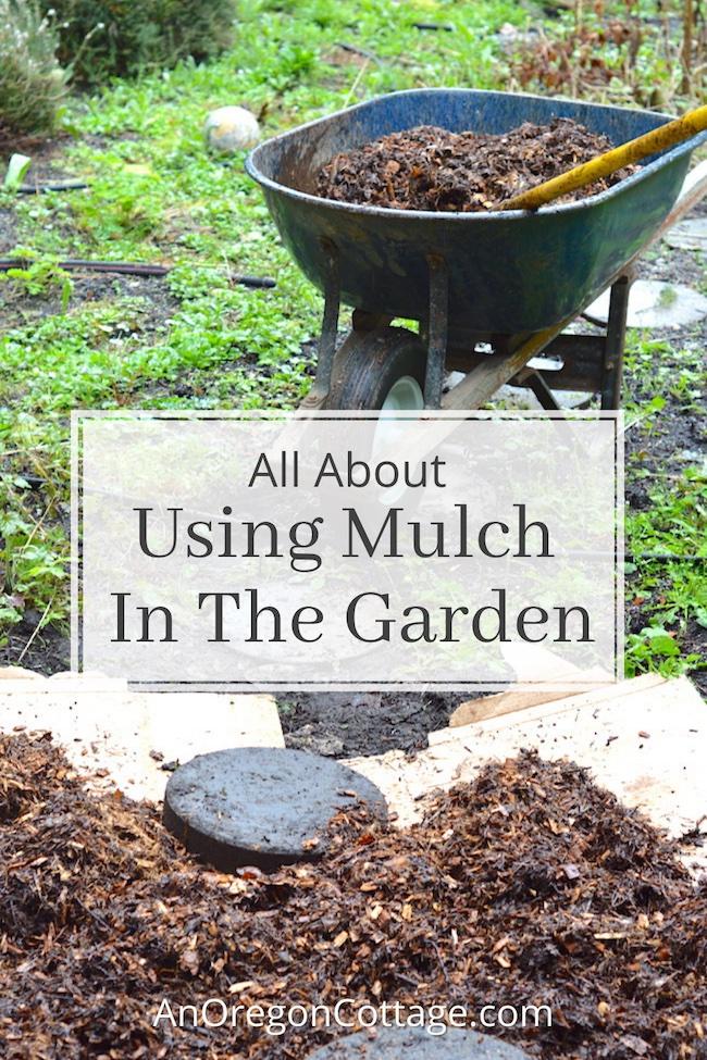using mulch in the garden