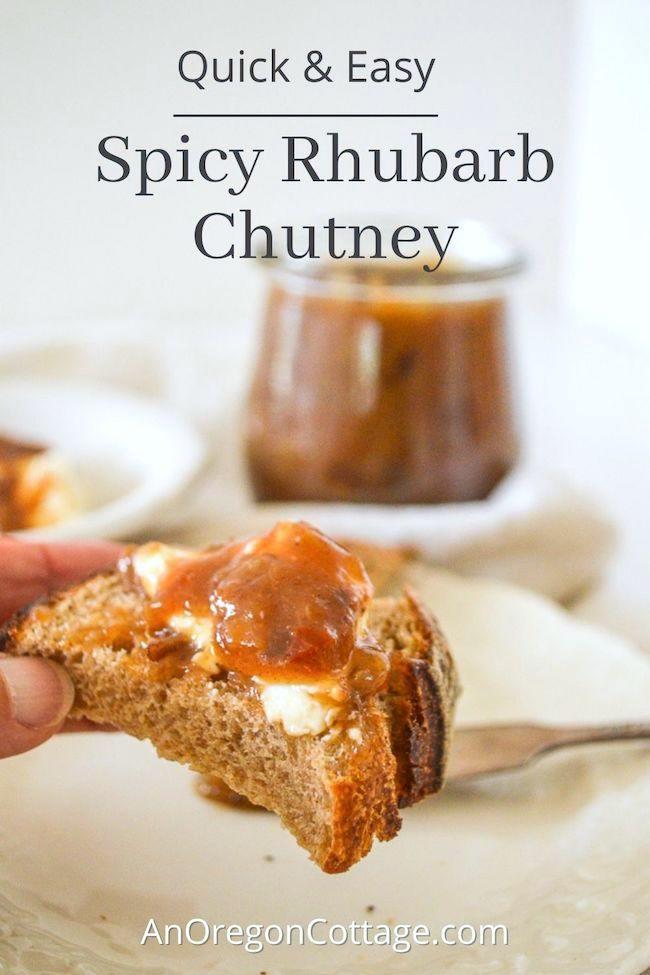 quick easy spicy rhubarb chutney