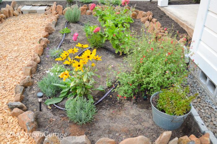 sunken garden east bed 2