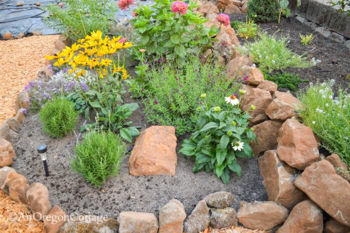 sunken garden west bed 1 south