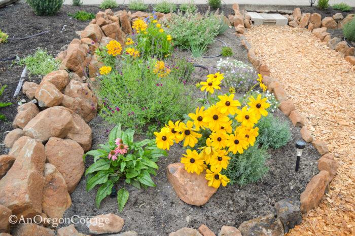 sunken garden west bed 2