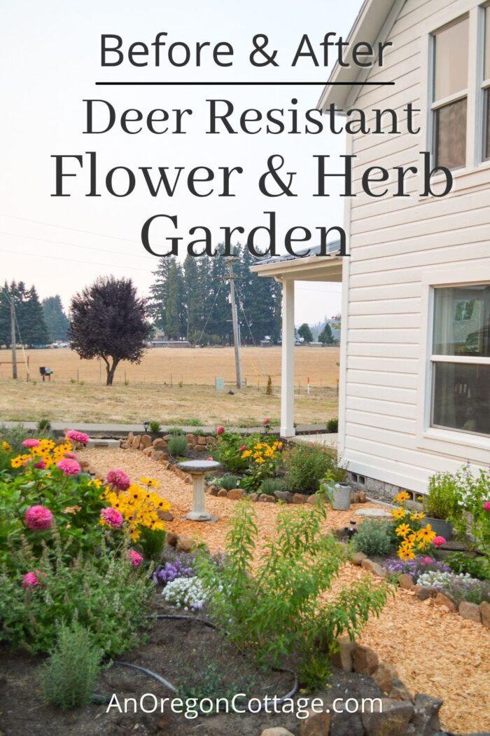deer resistant flower garden
