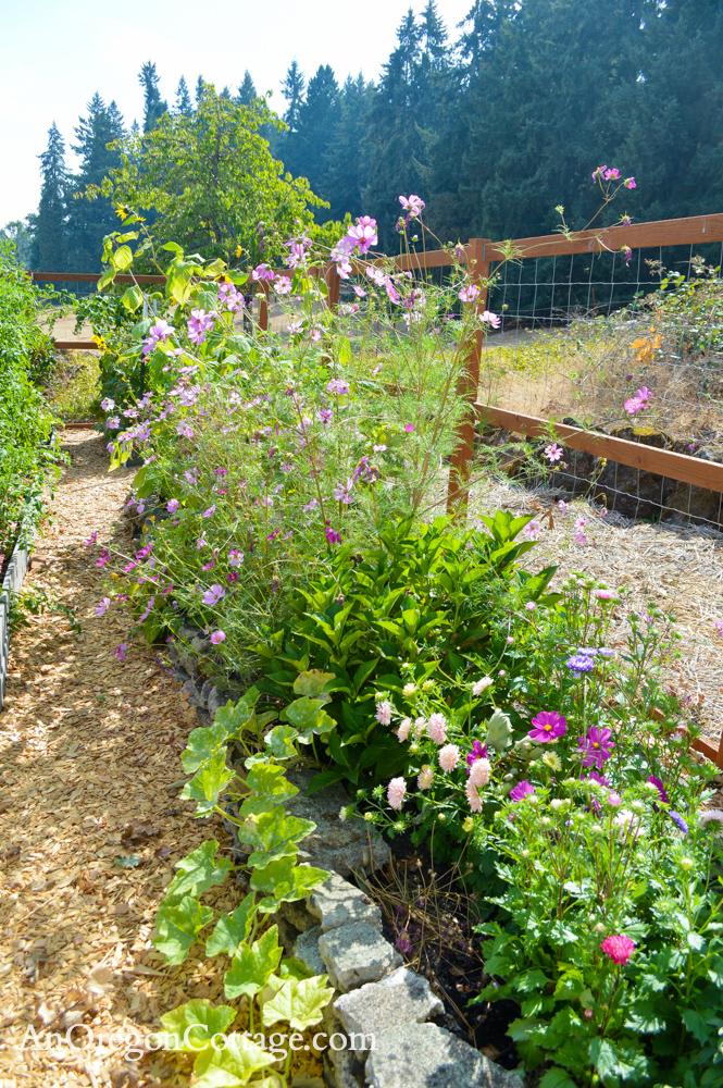 fall garden 21-cutting flower bed