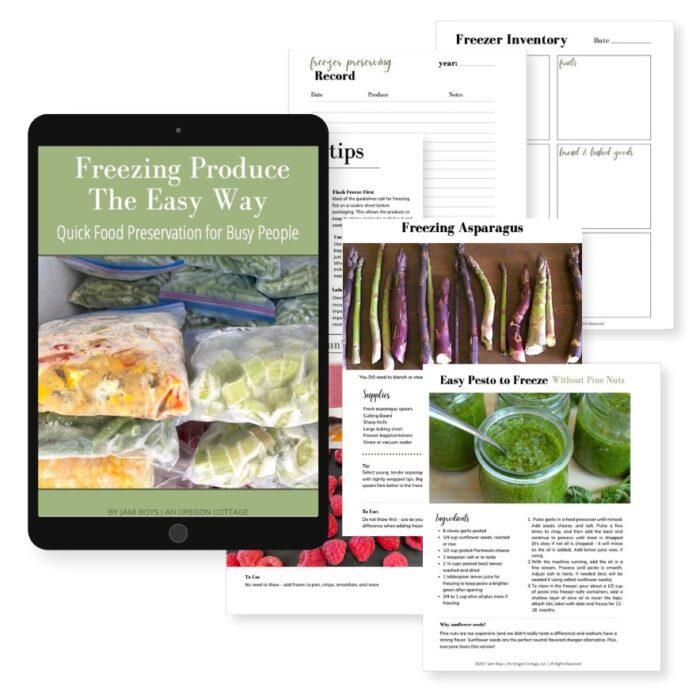 freezer ebook product image