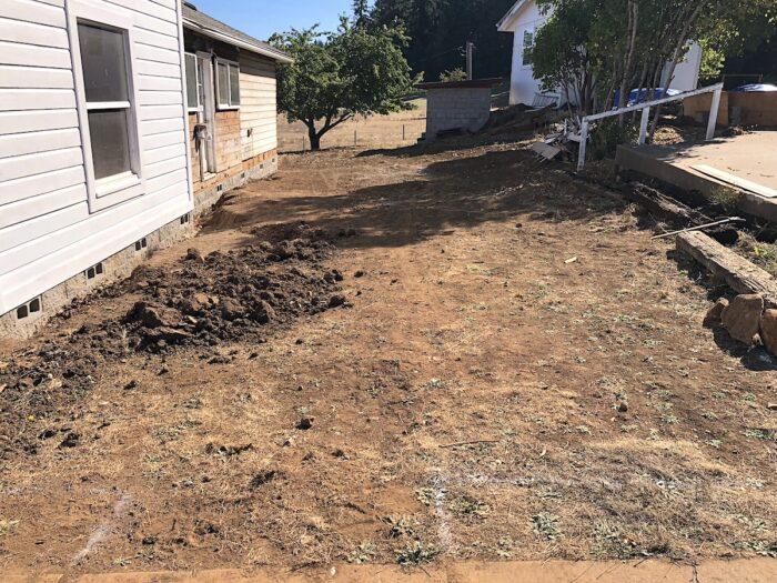 sideyard garden area before